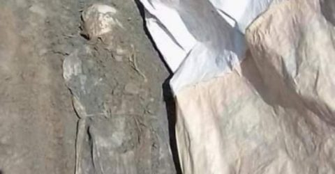 ভোলার ইলিশায় ১৬ বছর পরে কবর থেকে মিলল অক্ষত লাশ