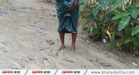 বোরহানউদ্দিন থানার টবগী ৯ নং ওয়ার্ড এ প্রায় ৩ কিলোমিটার রাস্তার বেহাল অবস্থা,